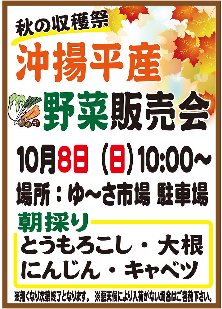 秋の収穫祭「沖揚平野菜販売会」